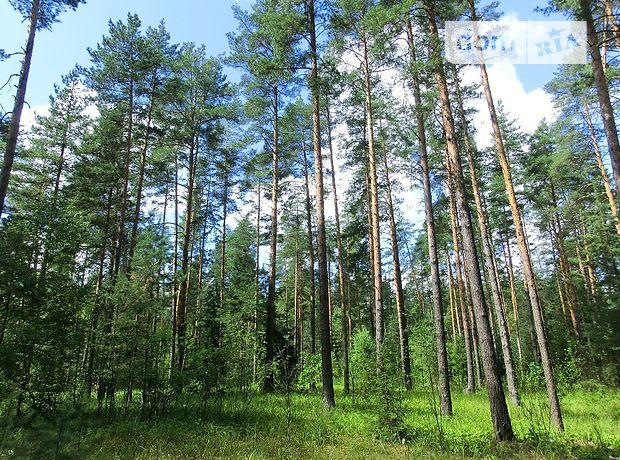 Земля под жилую застройку в селе Путровка, площадь 20 соток фото 1