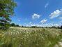 Земля под жилую застройку в селе Здоровка, площадь 15 соток фото 1