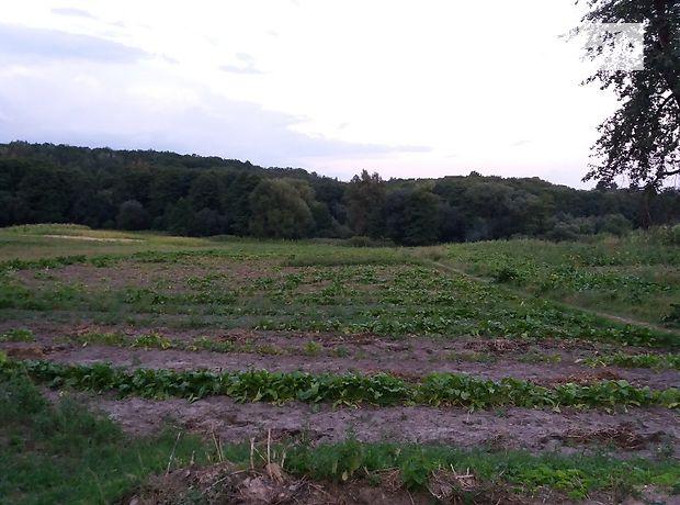 Земля под жилую застройку в селе Комаров, площадь 34 сотки фото 1