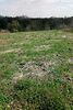 Земля под жилую застройку в селе Стрижавка, площадь 38 соток фото 3