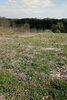 Земля под жилую застройку в селе Стрижавка, площадь 38 соток фото 4