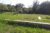 Земля под жилую застройку в селе Винницкие Хутора, площадь 4 сотки фото 6