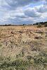 Земля под жилую застройку в селе Якушинцы, площадь 12 соток фото 1