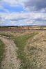 Земля под жилую застройку в селе Якушинцы, площадь 12 соток фото 3