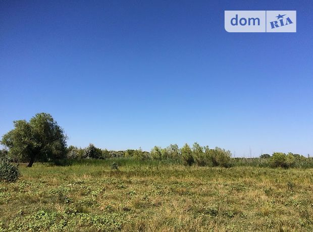 Земля под жилую застройку в селе Петро-Свистуново, площадь 25 соток фото 1