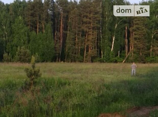 Земля под жилую застройку в селе Гавриловка, площадь 23 сотки фото 1