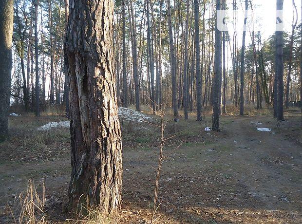Продажа участка под жилую застройку, Киевская, Вышгород, c.Лютиж