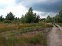 Земля под жилую застройку в Вышгороде, район Вышгород, площадь 1163 сотки фото 2
