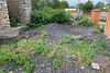Земля под жилую застройку в Ямполе, район Ямполь, площадь 713 соток фото 3
