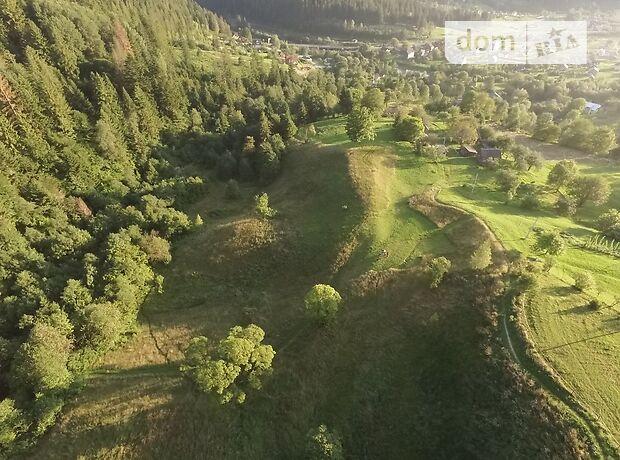 Земля под жилую застройку в селе Микуличин, площадь 140 соток фото 1