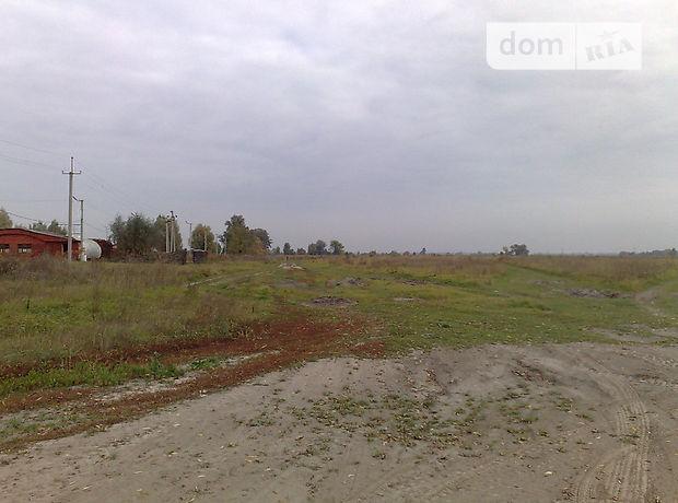 Земля коммерческого назначения в Борисполе, район Борисполь, площадь 490 соток фото 2