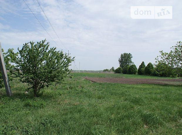 Земля коммерческого назначения в Борисполе, район Борисполь, площадь 7 Га фото 1
