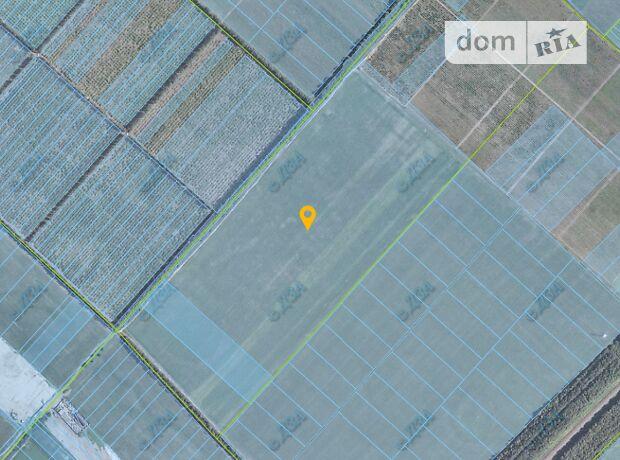 Земля коммерческого назначения в селе Великая Димерка, площадь 50 Га фото 1