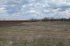 Земля коммерческого назначения в селе Баловка, площадь 200 соток фото 6