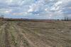 Земля коммерческого назначения в селе Баловка, площадь 200 соток фото 7