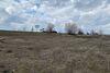 Земля коммерческого назначения в селе Баловка, площадь 200 соток фото 8