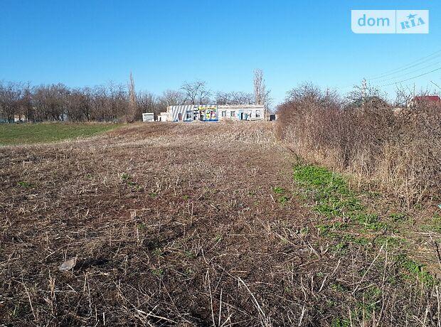 Земля комерційного призначення в селі Братолюбівка, площа 41 сотка фото 1