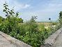 Земля коммерческого назначения в Киеве, район Теремки-1, площадь 80 соток фото 5