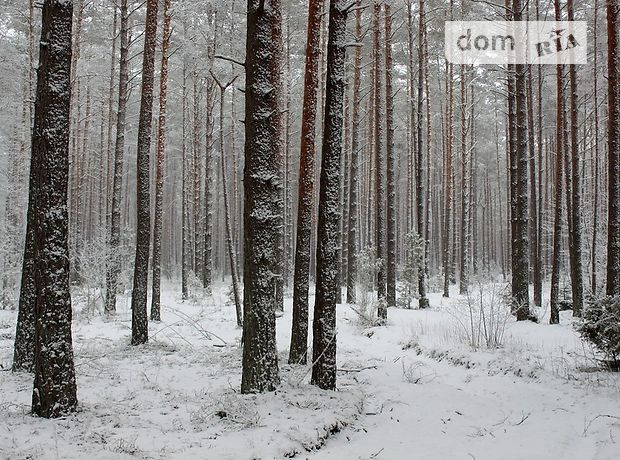 Земля коммерческого назначения в селе Конча-Заспа, площадь 1150 соток фото 1
