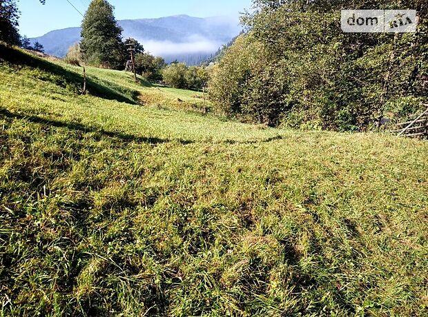 Земля коммерческого назначения в селе Ясиня, площадь 5 соток фото 1