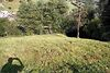 Земля коммерческого назначения в селе Ясиня, площадь 5 соток фото 5