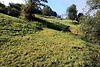 Земля коммерческого назначения в селе Ясиня, площадь 5 соток фото 8
