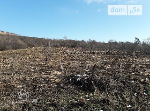 Продажа земли коммерческого назначение, Львовская, Сколе, c.Нижнее Синевидное