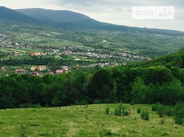 Продаж землі комерційного призначення, Закарпатська, Свалява, c.Голубине