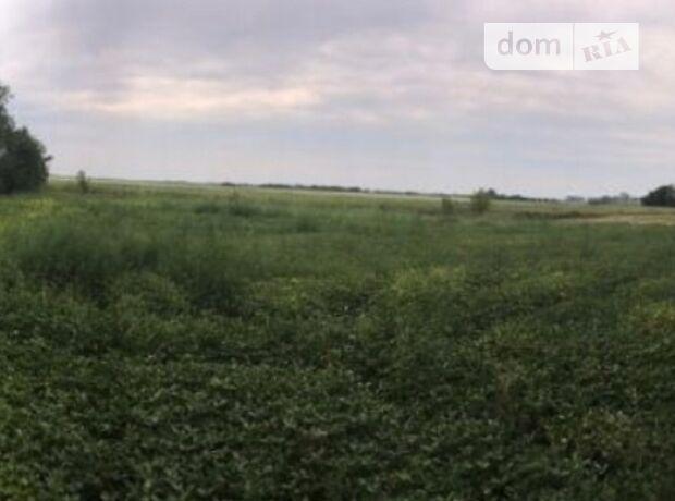 Земельный участок коммерческого назначения в Василькове, площадь 30 соток фото 1