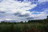 Земля коммерческого назначения в Виннице, район Хутор Шевченко, площадь 5 Га фото 8