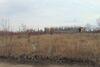 Земля коммерческого назначения в Виннице, район Хутор Шевченко, площадь 5 Га фото 2
