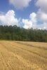 Земля коммерческого назначения в селе Лука-Мелешковская, площадь 1 Га фото 6