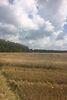 Земля коммерческого назначения в селе Лука-Мелешковская, площадь 1 Га фото 7