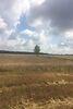 Земля коммерческого назначения в селе Лука-Мелешковская, площадь 1 Га фото 3