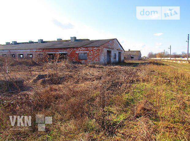 Земля коммерческого назначения в селе Якушинцы, площадь 32 сотки фото 1