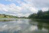 Земля рекреационного назначения в селе Бакалы, площадь 280 соток фото 7