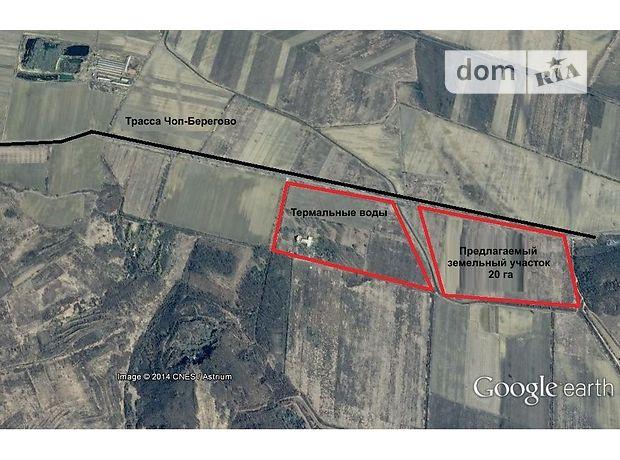 Продажа земли рекреационного назначения, Закарпатская, Берегово, c.Косонь