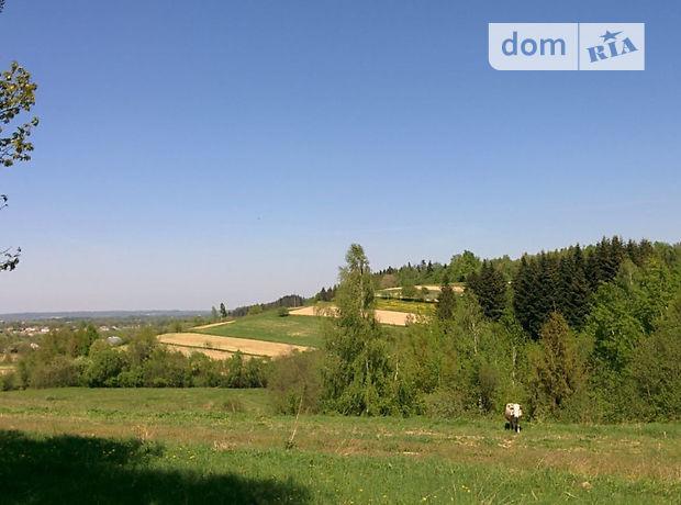 Земля рекреаційного призначення в селі Мигове, площа 50 соток фото 1