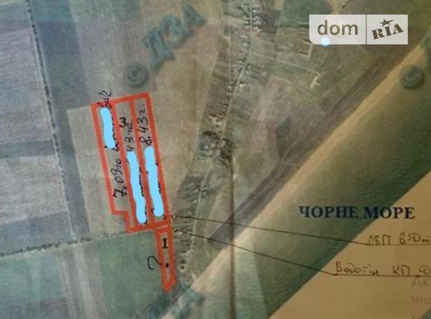 Земля сельскохозяйственного назначения в Белгороде-Днестровском, район Белгород-Днестровский, площадь 26 Га фото 1