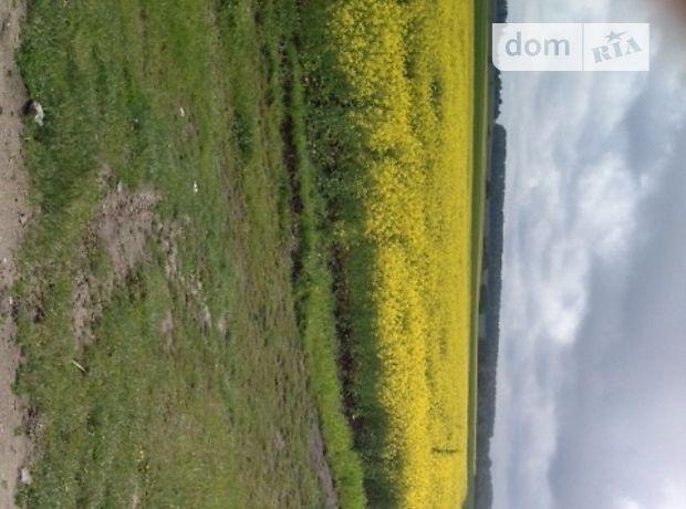 Земля сельскохозяйственного назначения в селе Великие Низгорцы, площадь 5 Га фото 1