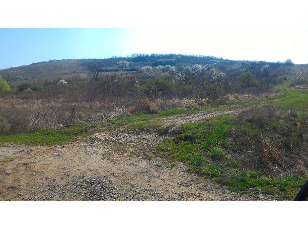 Земля сельскохозяйственного назначения в селе Косонь, площадь 1.2 Га фото 1