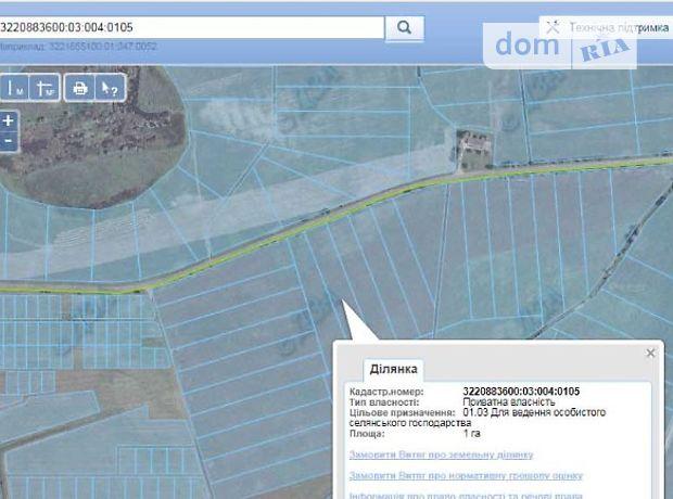 Продажа земли сельскохозяйственного назначения, Киевская, Борисполь, c.Дударков
