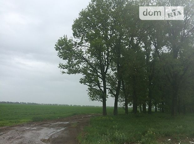 Продажа земли сельскохозяйственного назначения, Киевская, Борисполь, c.Великая Александровка