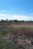 Земля сельскохозяйственного назначения в селе Бабинцы, площадь 9 соток фото 3