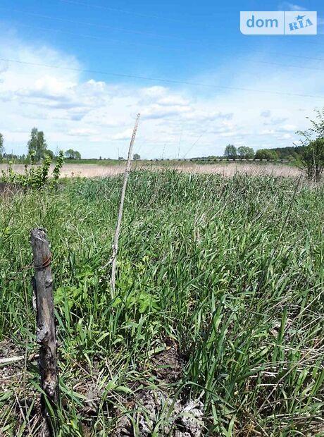 Земля сельскохозяйственного назначения в селе Бабинцы, площадь 9 соток фото 1