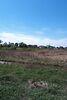 Земля сельскохозяйственного назначения в селе Бабинцы, площадь 9 соток фото 4