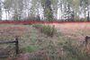 Земля сельскохозяйственного назначения в Бородянке, район Красный Рог, площадь 12 соток фото 6