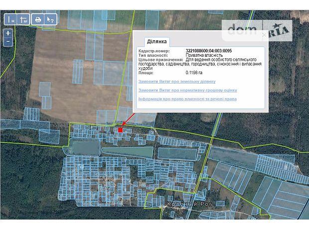 Земля сельскохозяйственного назначения в Бородянке, район Красный Рог, площадь 12 соток фото 1