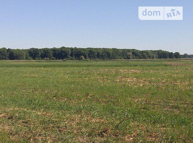 Продажа земли сельскохозяйственного назначения, Киевская, Бровары, c.Светильня