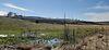 Земля сельскохозяйственного назначения в селе Годилов, площадь 40 соток фото 4